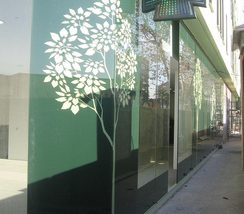 vidrio-design-fachada-arbol-mouk